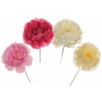 Pick fioriti