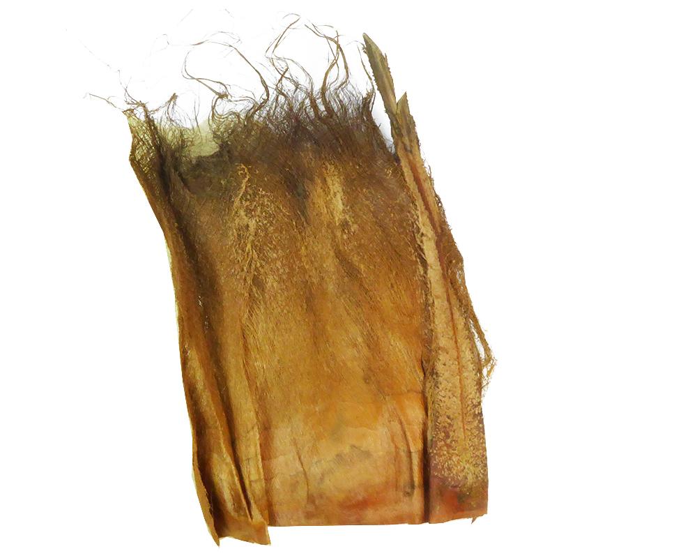 Palm Faser Naturale Gr 500 Pianta Fibra Di Cocco Decorazione Composizione