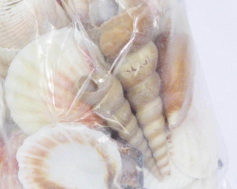 Conchiglie Assortite Sacchetto 4/6 Cm Naturali Decorazione Mare