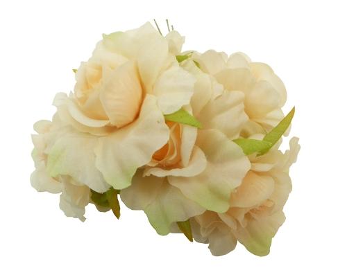 Rosa Aperta Pz 36