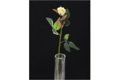 Bocciolo Di Rosa In Seta Con Foglie Modellabili 65 Cm