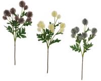 Cardo Selvatico Ramo Cm 56 Decorazione Addobbi Floreali